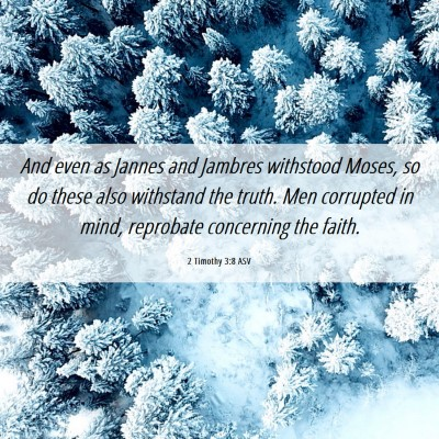 Picture 06 - 2 Timothy 3:8 ASV - And even as Jannes and Jambres withstood Moses, - Bible Verse Picture