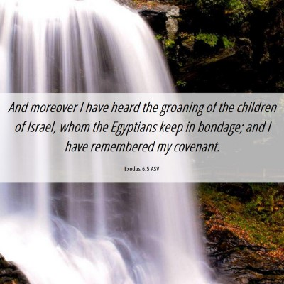 Picture 06 - Exodus 6:5 ASV - And moreover I have heard the groaning of the - Bible Verse Picture