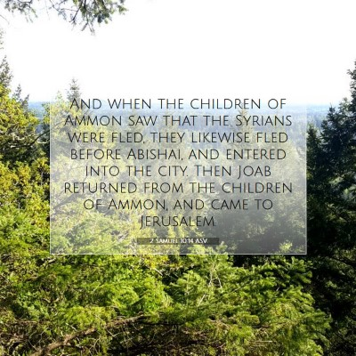 Picture 07 - 2 Samuel 10:14 ASV - And when the children of Ammon saw that the - Bible Verse Picture