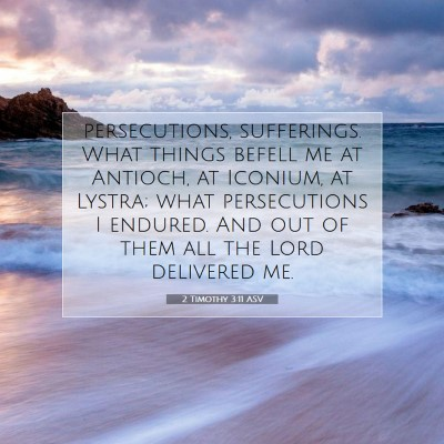 Picture 07 - 2 Timothy 3:11 ASV - persecutions, sufferings. What things befell me - Bible Verse Picture