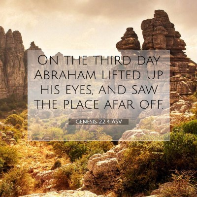 Picture 07 - Genesis 22:4 ASV - On the third day Abraham lifted up his eyes, and - Bible Verse Picture