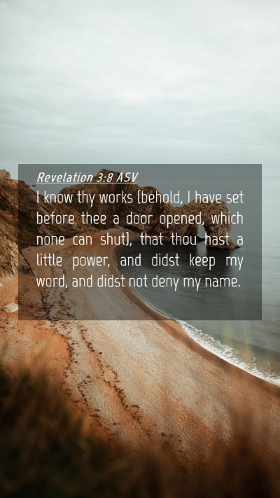Picture 04 - Revelation 3:8 ASV Mobile Phone Wallpaper - I know thy works (behold, I have set before thee - Mobile Bible Verse Wallpaper