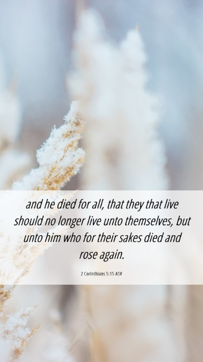 Picture 06 - 2 Corinthians 5:15 ASV Mobile Phone Wallpaper - and he died for all, that they that live should - Mobile Bible Verse Wallpaper
