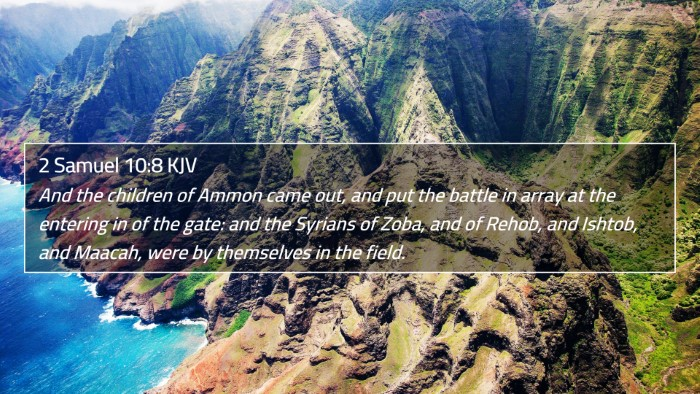 2 Samuel 10:8 KJV 4K Wallpaper - And the children of Ammon came out, and put the - 4K Wallpaper Bible Verse
