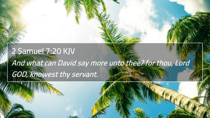 2 Samuel 7:20 KJV 4K Wallpaper - And what can David say more unto thee? for thou, - 4K Wallpaper Bible Verse