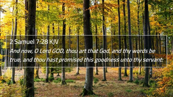 2 Samuel 7:28 KJV 4K Wallpaper - And now, O Lord GOD, thou art that God, and thy - 4K Wallpaper Bible Verse