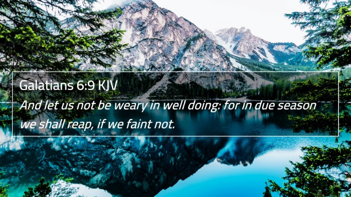 Galatians 6:9 KJV 4K Wallpaper - And let us not be weary in well doing - 4K Bible Verse Wallpaper