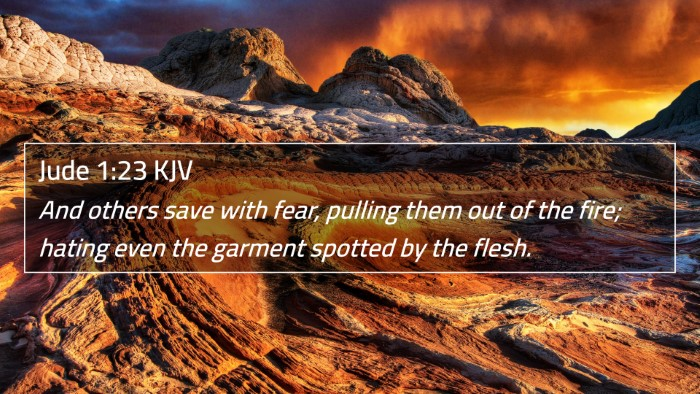 Jude 1:23 KJV 4K Wallpaper - And others save with fear, pulling them out of - 4K Wallpaper Bible Verse