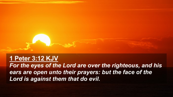 Picture 02 - 1 Peter 3:12 KJV 4K Wallpaper - For the eyes of the Lord are over the righteous, - 4K Wallpaper Bible Verse