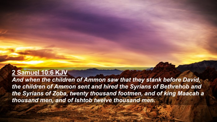 Picture 02 - 2 Samuel 10:6 KJV 4K Wallpaper - And when the children of Ammon saw that they - 4K Wallpaper Bible Verse