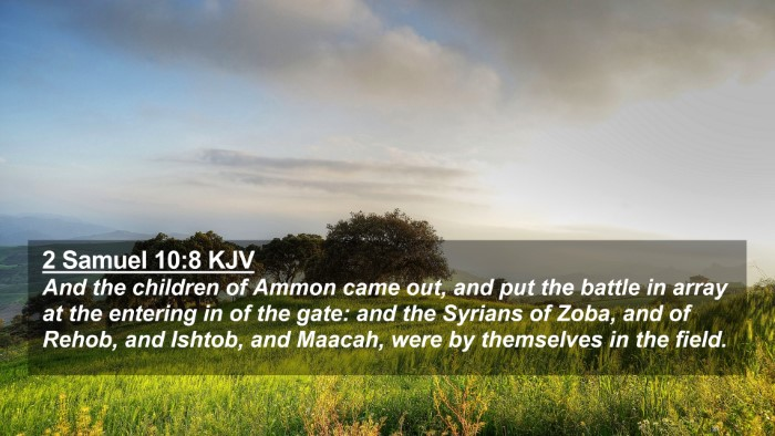 Picture 02 - 2 Samuel 10:8 KJV 4K Wallpaper - And the children of Ammon came out, and put the - 4K Wallpaper Bible Verse