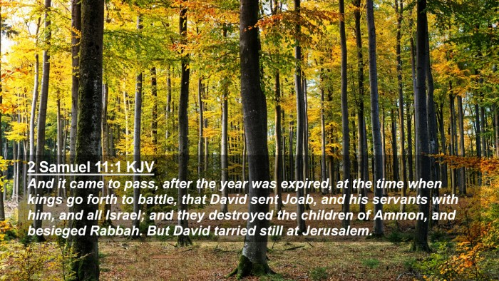 Picture 02 - 2 Samuel 11:1 KJV 4K Wallpaper - And it came to pass, after the year was expired, - 4K Wallpaper Bible Verse
