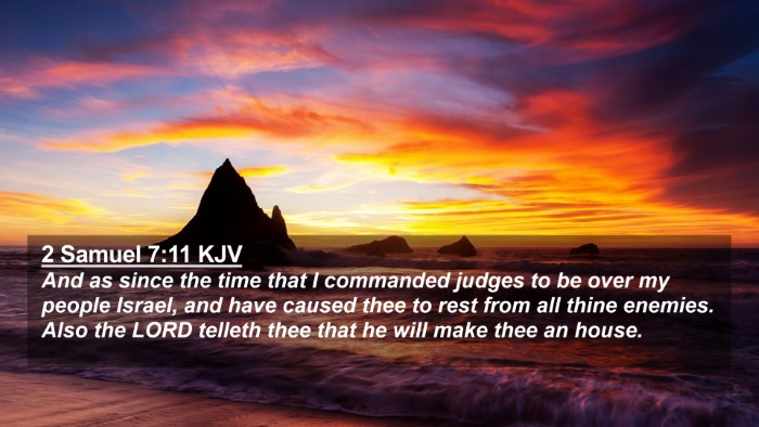 Picture 02 - 2 Samuel 7:11 KJV 4K Wallpaper - And as since the time that I commanded judges to - 4K Wallpaper Bible Verse
