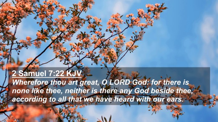 Picture 02 - 2 Samuel 7:22 KJV 4K Wallpaper - Wherefore thou art great, O LORD God: for there - 4K Wallpaper Bible Verse