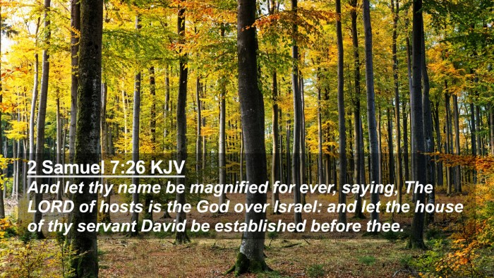 Picture 02 - 2 Samuel 7:26 KJV 4K Wallpaper - And let thy name be magnified for ever, saying, - 4K Wallpaper Bible Verse