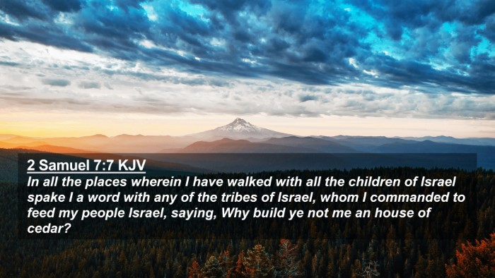 Picture 02 - 2 Samuel 7:7 KJV 4K Wallpaper - In all the places wherein I have walked with all - 4K Wallpaper Bible Verse