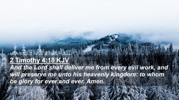 Picture 02 - 2 Timothy 4:18 KJV 4K Wallpaper - And the Lord shall deliver me from every evil - 4K Wallpaper Bible Verse