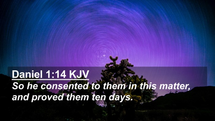 Picture 02 - Daniel 1:14 KJV 4K Wallpaper - So he consented to them in this matter, and - 4K Wallpaper Bible Verse