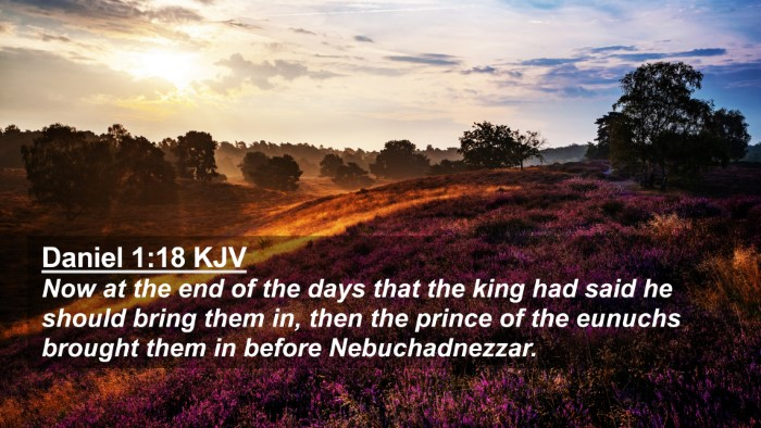 Picture 02 - Daniel 1:18 KJV 4K Wallpaper - Now at the end of the days that the king had said - 4K Wallpaper Bible Verse