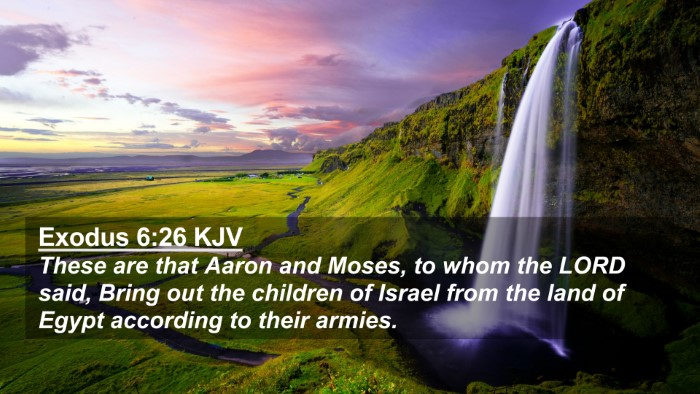 Picture 02 - Exodus 6:26 KJV 4K Wallpaper - These are that Aaron and Moses, to whom the LORD - 4K Wallpaper Bible Verse