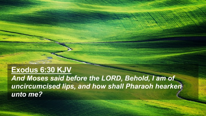 Picture 02 - Exodus 6:30 KJV 4K Wallpaper - And Moses said before the LORD, Behold, I am of - 4K Wallpaper Bible Verse