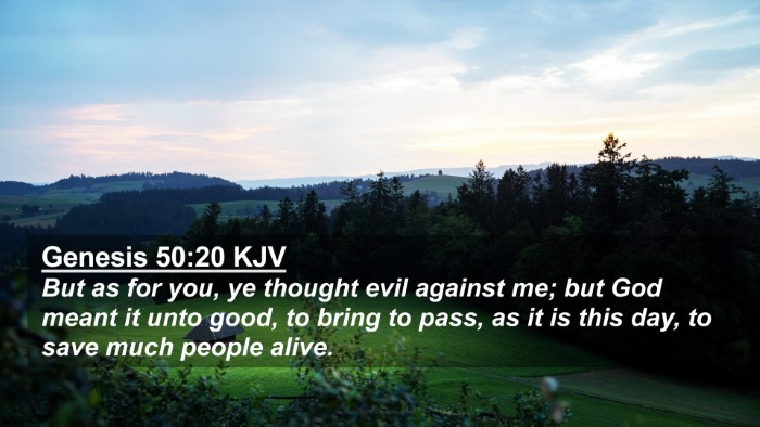 Picture 02 - Genesis 50:20 KJV 4K Wallpaper - But as for you, ye thought evil against me; but - 4K Wallpaper Bible Verse