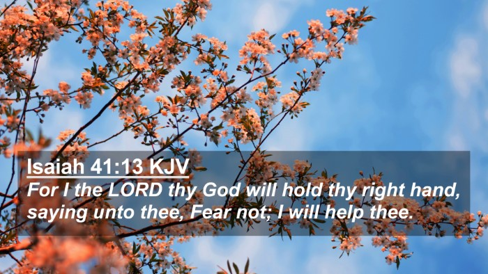 Picture 02 - Isaiah 41:13 KJV 4K Wallpaper - For I the LORD thy God will hold thy right hand, - 4K Wallpaper Bible Verse