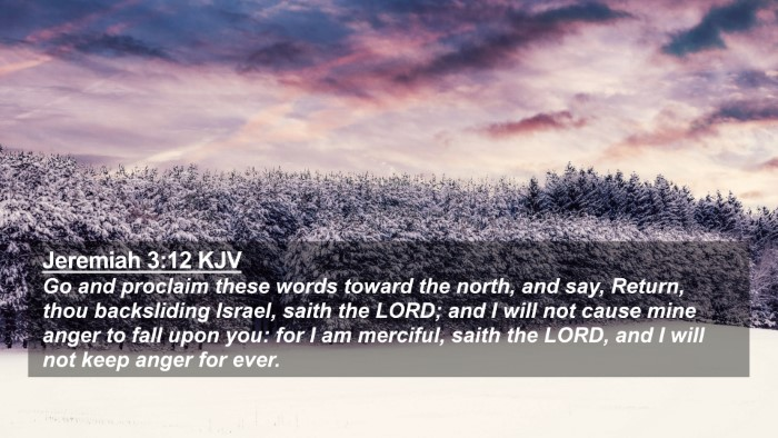 Picture 02 - Jeremiah 3:12 KJV 4K Wallpaper - Go and proclaim these words toward the north, and - 4K Wallpaper Bible Verse