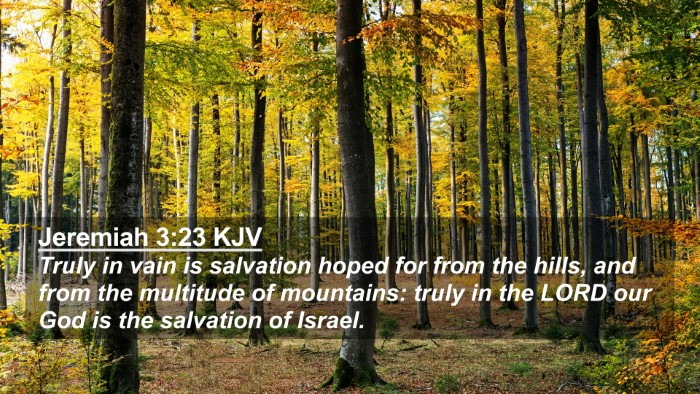 Picture 02 - Jeremiah 3:23 KJV 4K Wallpaper - Truly in vain is salvation hoped for from the - 4K Wallpaper Bible Verse
