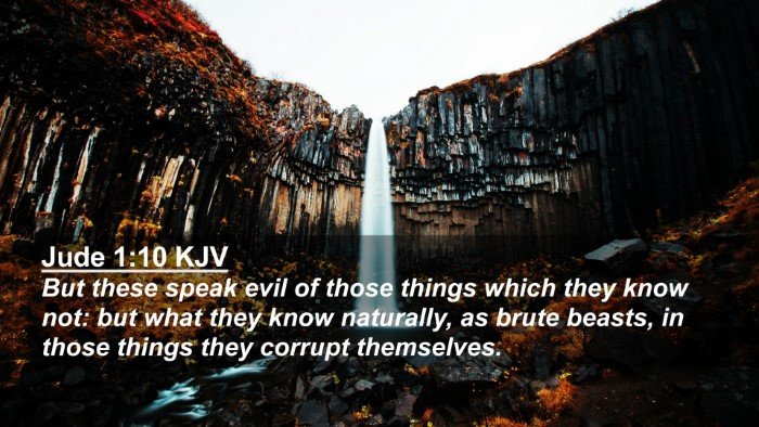 Picture 02 - Jude 1:10 KJV 4K Wallpaper - But these speak evil of those things which they - 4K Wallpaper Bible Verse