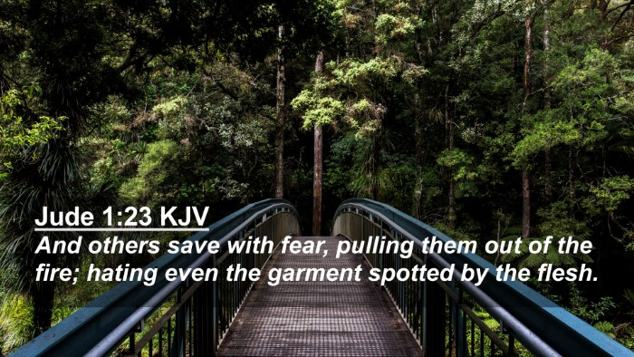 Picture 02 - Jude 1:23 KJV 4K Wallpaper - And others save with fear, pulling them out of - 4K Wallpaper Bible Verse