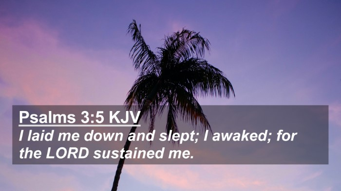 Picture 02 - Psalms 3:5 KJV 4K Wallpaper - I laid me down and slept; I awaked; for the LORD - 4K Wallpaper Bible Verse