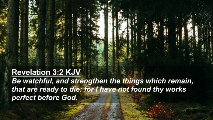 Picture 02 - Revelation 3:2 KJV 4K Wallpaper - Be watchful, and strengthen the things which - 4K Wallpaper Bible Verse