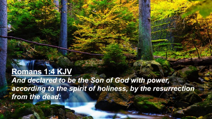 Picture 02 - Romans 1:4 KJV 4K Wallpaper - And declared to be the Son of God with power, - 4K Wallpaper Bible Verse