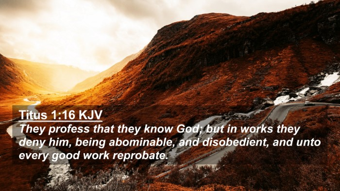 Picture 02 - Titus 1:16 KJV 4K Wallpaper - They profess that they know God; but in works - 4K Wallpaper Bible Verse