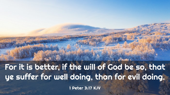 Picture 03 - 1 Peter 3:17 KJV 4K Wallpaper - For it is better, if the will of God be so, that - 4K Wallpaper Bible Verse