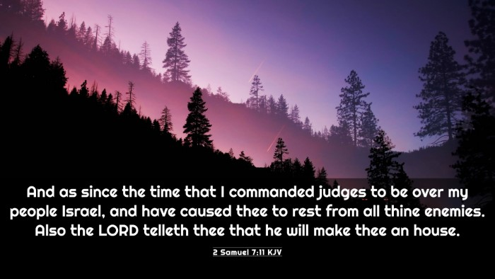 Picture 03 - 2 Samuel 7:11 KJV 4K Wallpaper - And as since the time that I commanded judges to - 4K Wallpaper Bible Verse