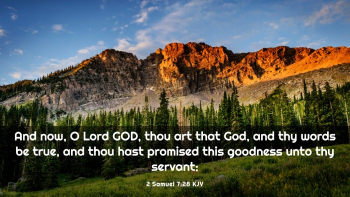 Picture 03 - 2 Samuel 7:28 KJV 4K Wallpaper - And now, O Lord GOD, thou art that God, and thy - 4K Wallpaper Bible Verse