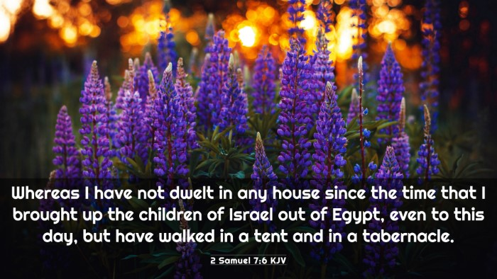 Picture 03 - 2 Samuel 7:6 KJV 4K Wallpaper - Whereas I have not dwelt in any house since the - 4K Wallpaper Bible Verse