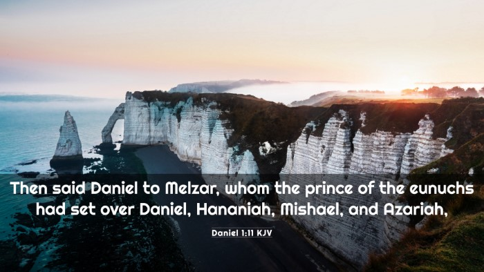 Picture 03 - Daniel 1:11 KJV 4K Wallpaper - Then said Daniel to Melzar, whom the prince of - 4K Wallpaper Bible Verse
