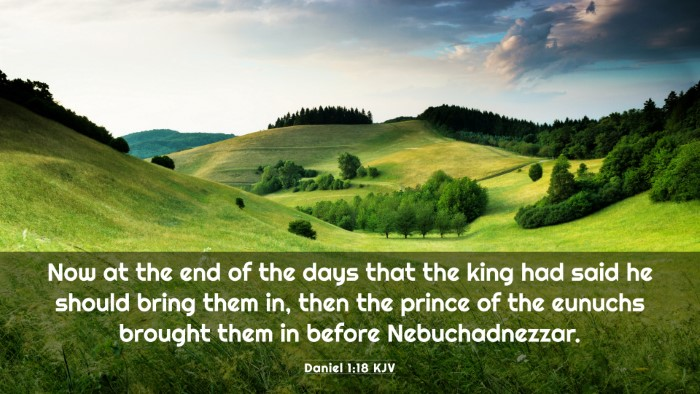 Picture 03 - Daniel 1:18 KJV 4K Wallpaper - Now at the end of the days that the king had said - 4K Wallpaper Bible Verse