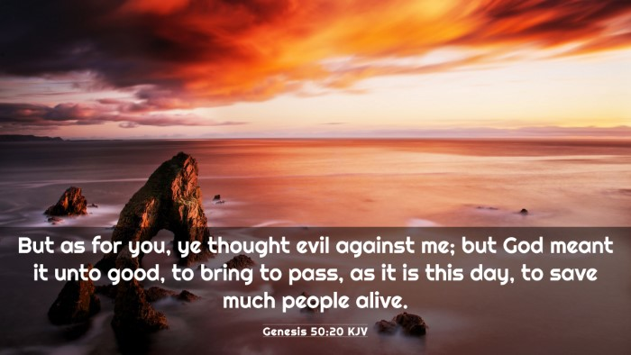 Picture 03 - Genesis 50:20 KJV 4K Wallpaper - But as for you, ye thought evil against me; but - 4K Wallpaper Bible Verse