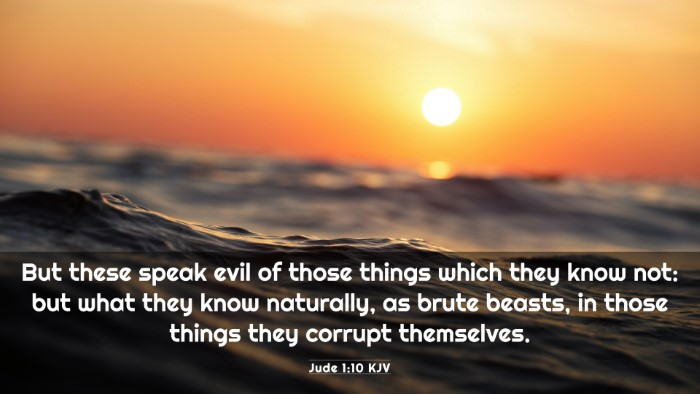 Picture 03 - Jude 1:10 KJV 4K Wallpaper - But these speak evil of those things which they - 4K Wallpaper Bible Verse