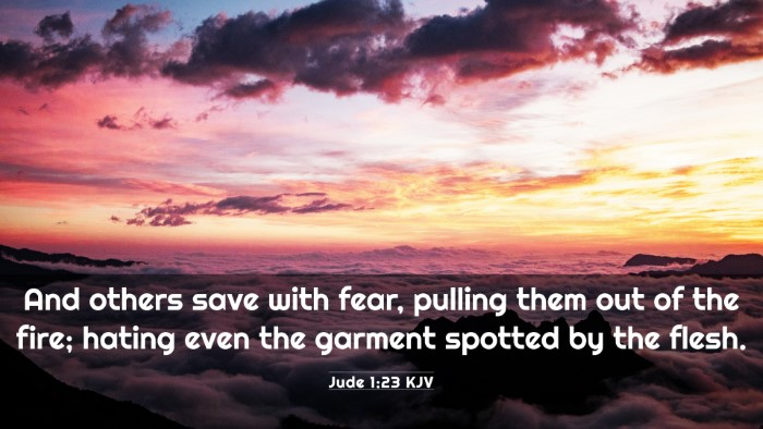 Picture 03 - Jude 1:23 KJV 4K Wallpaper - And others save with fear, pulling them out of - 4K Wallpaper Bible Verse