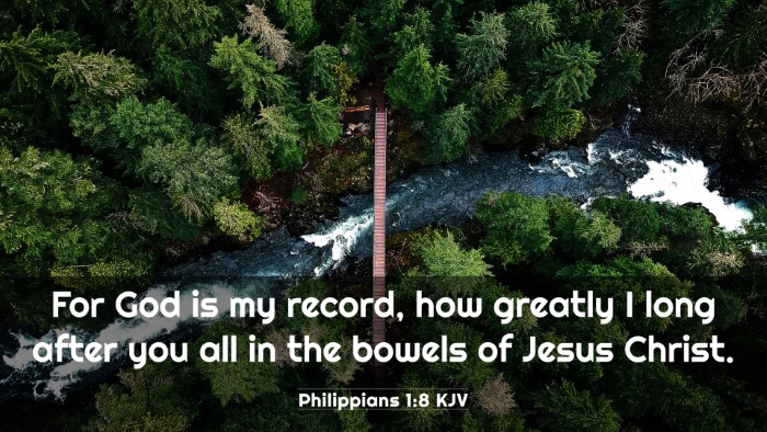 Picture 03 - Philippians 1:8 KJV 4K Wallpaper - For God is my record, how greatly I long after - 4K Wallpaper Bible Verse
