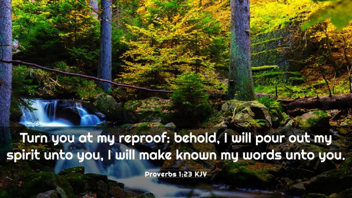 Picture 03 - Proverbs 1:23 KJV 4K Wallpaper - Turn you at my reproof: behold, I will pour out - 4K Wallpaper Bible Verse