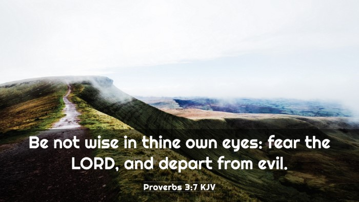 Picture 03 - Proverbs 3:7 KJV 4K Wallpaper - Be not wise in thine own eyes: fear the LORD, and - 4K Wallpaper Bible Verse