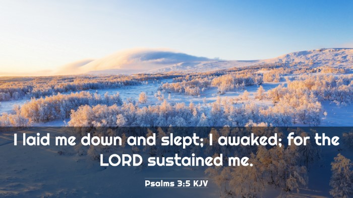 Picture 03 - Psalms 3:5 KJV 4K Wallpaper - I laid me down and slept; I awaked; for the LORD - 4K Wallpaper Bible Verse
