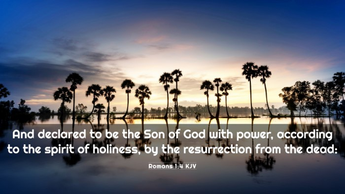 Picture 03 - Romans 1:4 KJV 4K Wallpaper - And declared to be the Son of God with power, - 4K Wallpaper Bible Verse