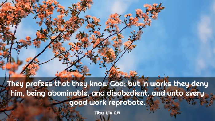 Picture 03 - Titus 1:16 KJV 4K Wallpaper - They profess that they know God; but in works - 4K Wallpaper Bible Verse